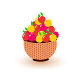 Different colored apples in the basket. Eps 10 Royalty Free Stock Photos