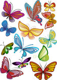 Different colored butterflies Stock Image