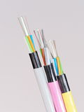 Different colored fiber optic cable ends with stripped jacket layers and exposed colored fibers Royalty Free Stock Photo