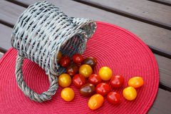 Different colorful cherry tomatoes. Stock Image