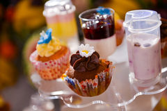 Different colorful cupcakes Stock Photos