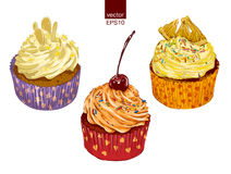 Different colorful delicious cupcakes. Delicious cupcakes set isolated  illustration Royalty Free Stock Photography