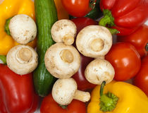 Different colorful fresh vegetables Royalty Free Stock Image