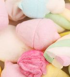 Different colorful marshmallow. Stock Photography