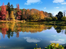Different colors of autumn scenery Stock Photos