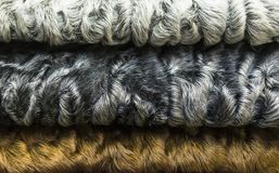 Different colors of karakul lambskin texture, background. Fur background Royalty Free Stock Images