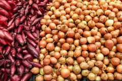 Onions bulk. Different colors onions in store bulk sales royalty free stock photo