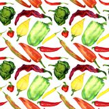 Different colors and shapes peppers variety. Peppers variety, seamless pattern design on white background, hand painted watercolor illustration Royalty Free Stock Photos