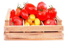 Different colors and size Tomatoes in wooden box Stock Images