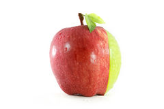 Different colors sliced apple Stock Photography