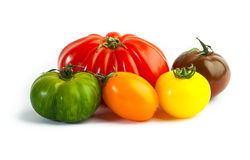 Different colors tomatos, Solanum lycopersicum Royalty Free Stock Photo