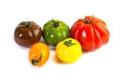 Different colors tomatos, Solanum lycopersicum Stock Photos