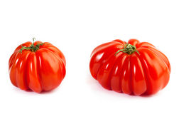 Different colors tomatos, Solanum lycopersicum Royalty Free Stock Images