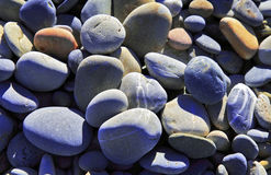 Different coloured Pebbles Royalty Free Stock Images