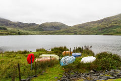 Different coloured rowing boats on bank of reservoir. Royalty Free Stock Images