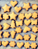 Different cookies Royalty Free Stock Photos