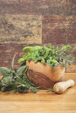 Different culinary herbs in a mortar Royalty Free Stock Photography