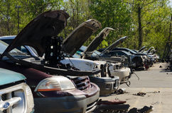 Different damaged cars on a junk yard Stock Photography
