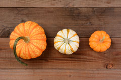 Different Decorative Pumpkins Royalty Free Stock Photography