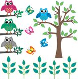 Different design elements. Like owls butterflies plants tree Stock Images