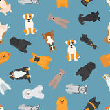 Different dogs breed seamless pattern Stock Image