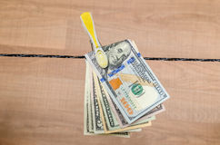 Different dollar bills dry on cord Stock Image
