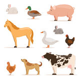 Different domestic animals on farm. Geese, ducks, hens chickens and cattle. Vector illustrations set stock illustration