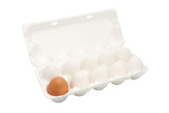 Different eggs in a box Stock Image