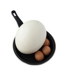 Different Eggs On Frying Pan Royalty Free Stock Images