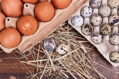 Different eggs Stock Photography