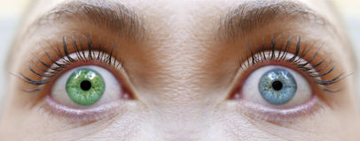 Different eye colors, blue and green eyes Royalty Free Stock Images