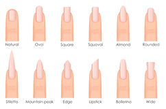 Different fashion nail shapes. Set kinds of nails. Fashion nails type trends.  Stock Images