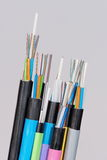 Different fiber optic cable ends with stripped jacket layers and exposed colored fibers Royalty Free Stock Image