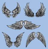 The different fictional wings. Vector image of the various fantasy wings Stock Image