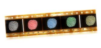 Different fingerprints. Selection of diverse fingerprints on film Stock Images