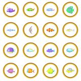 Different fish icons circle Royalty Free Stock Images