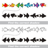 Different fishes set. Find correct shadow. Stock Photo