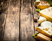 Different flavored cheeses with walnuts and white grapes. Stock Image
