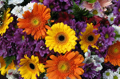 Different flower bouquet. Closeup of different flower bouquet as background Royalty Free Stock Images