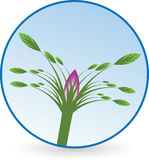 Different flower logo Stock Photography