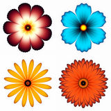 Different flower set Royalty Free Stock Image