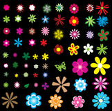Different flowers. Isolated on black Stock Photo