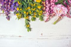 Different flowers  for card. Different flowers arranged on a white table Royalty Free Stock Image