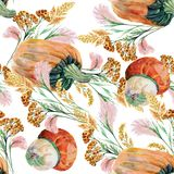Watercolor Wild Grasses with Pumpkin on a white background. Different   flowers handmade  white  background seamless pattern watercolor color  floral  original Stock Images