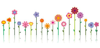 Different flowers - Vector image Royalty Free Stock Photos