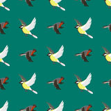 Different flying birds seamless pattern vector illustration. Royalty Free Stock Photography