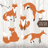 Different fox drawings Royalty Free Stock Image