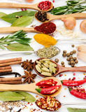 Different fragrant spices in spoons Stock Photos