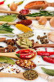 Different fragrant spices in spoons Royalty Free Stock Photos