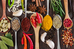 Different fragrant spices in spoons Royalty Free Stock Image